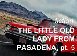 The Little Old Lady from Pasadena, pt. 5